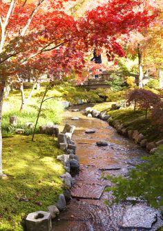 Zenrinji Eikando Temple,Kyoto 禅林寺 永観堂