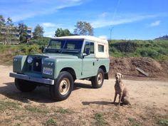 // 1959-Land-Rover-restored.jpg (600×450)
