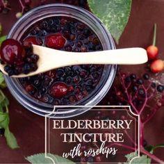 Elderberry Benefits, Elderberry Recipes, Herbal Tinctures, Herbalism, Herbal Remedies, Natural Remedies, Rosehip Syrup, Tea Blends, Homemade Beauty Products