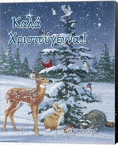 Καλά Χριστούγεννα- Merry Christmas Christmas Wishes, Merry Christmas, Beautiful Pink Roses, Greek Language, 1 Gif, Winter Season, Happy Holidays, Diy And Crafts, Christmas Decorations