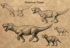 Evosaur art - Concept art - Gorgonops by mrXylax Prehistoric Wildlife, Prehistoric Dinosaurs, Prehistoric World, Prehistoric Creatures, Dinosaur Era, Dinosaur Images, Creature Concept Art, Creature Design, Creature Drawings