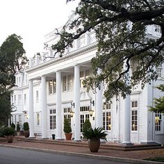 The WIllcox, Aiken SC