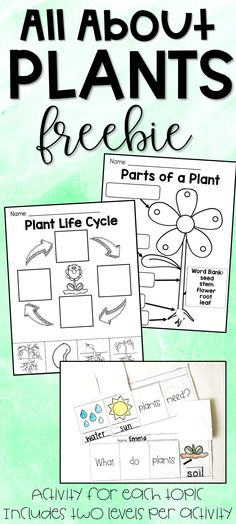 Parts of a plant, life cycle of a plant, what plants need to survive FREE printables! Differentiated for two levels! of a plant All About Plants Freebie - Parts of a Plant, Plant Life Cycle, What Plants Need 1st Grade Science, Kindergarten Science, Science Activities, Sequencing Activities, Elementary Science, Science Resources, Science Ideas, Parts Of A Flower, Parts Of A Plant