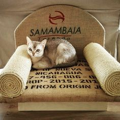 Hand-made cat sofa from genuine burlap coffee bags by Mireille Design