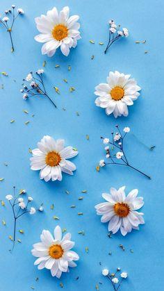 Leaves Wallpaper Iphone, Flowery Wallpaper, Flower Background Wallpaper, Sunflower Wallpaper, Summer Wallpaper, Cute Wallpaper Backgrounds, Cellphone Wallpaper, Colorful Wallpaper, Aesthetic Iphone Wallpaper