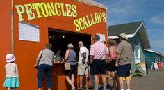 Scallop festival, Richibucto, New Brunswick Canada