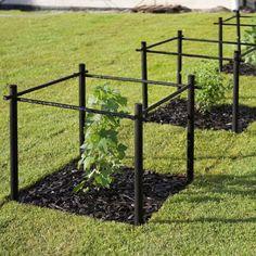 stod-for-barbuskar-hasselfors-garden.jpg (500×500)