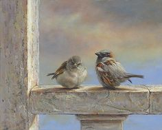 Are not two sparrows sold for a penny? Art And Illustration, Art Et Nature, Photo Animaliere, Bird Pictures, Little Birds, Watercolor Bird, Wildlife Art, Animal Paintings, Bird Art