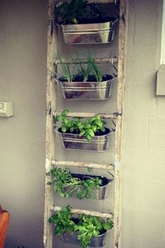 Kitchen:Metal Wall Planters Indoor Ikea Hanging Plant Holder Wall Herb Garden Ik… - All For Herbs And Plants Small Patio Spaces, Small Space Gardening, Garden Ideas For Small Spaces, Small Patio Design, Small Yards, Balcony Design, Outdoor Spaces, Apartment Herb Gardens, Patio Gardens
