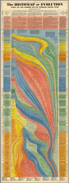 10 Million Years of Evolution Visualized in an Elegant, 5-Foot Long Infographic from 1931 | Open Culture