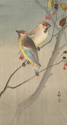 Ohara Koson Two Japanese Waxwings on Twig with Red Berries (o-tanzaku), Woodblock Print Bird Illustration, Illustrations, Japanese Prints, Japanese Bird, Ohara Koson, Art Chinois, Japan Painting, Art Asiatique, Photo D Art