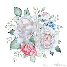 Hand drawn watercolor bouquet isolated on white background. Great for creating vintage designs or wedding and greeting cards