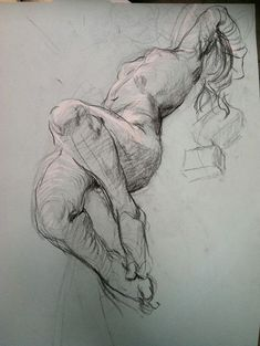life drawing by Steven Assael Anatomy Sketches, Anatomy Drawing, Anatomy Art, Drawing Sketches, Art Drawings, Figure Drawings, Gesture Drawing, Body Drawing, Life Drawing