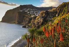 Portugal, Madère l'île aux fleurs