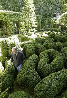 Richard Shapiro's boxwood maze is a series of rounded undulating forms traversed by curlicue gravel walkways.