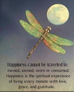 Happiness is the spiritual experience of living every minute with Love, Grace an. - Happiness is the spiritual experience of living every minute with Love, Grace and Gratitude. Life Quotes Love, Wisdom Quotes, Great Quotes, Quotes To Live By, Me Quotes, Motivational Quotes, Inspirational Quotes, Reason Quotes, Uplifting Quotes
