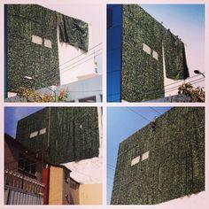 Muro verde 18x13 mts Edificio Japay