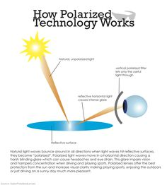 Polarized Technololgy Understanding the benefits of polarized technology and how this technology provides a benefit to eyewear. care design care health care poster care dark circles care logo care skin care tips care vision Diseases Of The Eye, Eye Anatomy, Eye Facts, Vision Eye, Healthy Eyes, Eyes Problems, Eye Doctor, Medical History, Eye Strain