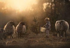 ..living on the farm.. by Elena Shumilova