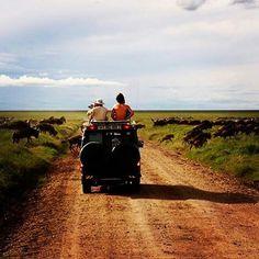 #Repost @africantravels  #serengetiplains #wildebeest #serengeti #mainroad #africantravels #5daySerengetiCampingSafari #africa #traveladdict #WhereintheworldisJPKC #naturelover #igernature
