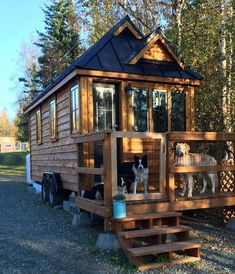 Dog friendly enclosed porch...Check out Tiny House, Big Adventures on Facebook. http://smallhousediy.com/category/small-house/ #TinyCabins