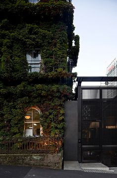Penny Hay - AUCKLAND, Wintergarden at the Northern Club |