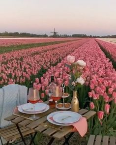 Spring Aesthetic, Flower Aesthetic, Travel Aesthetic, Romantic Dinners, Beautiful Places To Travel, Belle Photo, Dream Vacations, Beautiful Flowers, Places To Go