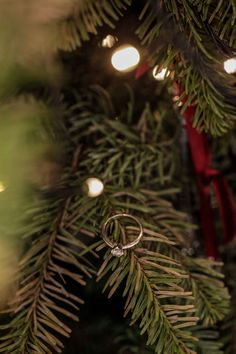 The most beautiful ornament in the Christmas Tree. My engagement ring.