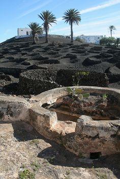 Aljibe y viñedos en Lanzarote Tías Ene13 185 by lanzarote rural, via Flickr