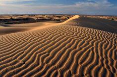Rajasthan desert ...