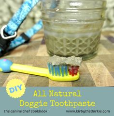 A DIY Doggie Toothpaste your dog will love! #easy #homemade #dogtoothpaste #DIY