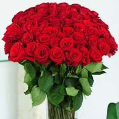 Red Roses 100 Stems 89.99
