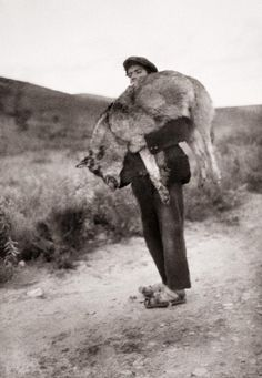 Lobero en los Montes de Toledo Diego González Ragel Toledo, 1925-1935