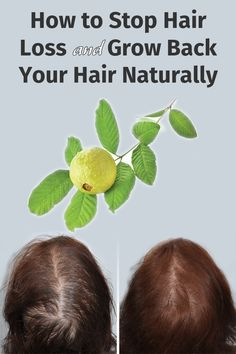 How to Stop Hair Loss and Grow Back Your Hair Naturally