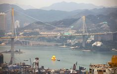 florentijn hofman's giant inflatable rubber duck floats into hong kong