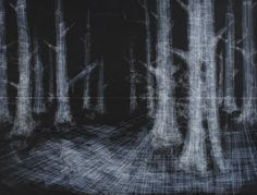 hong seon jong: labyrinth at david b. smith gallery-'black forest', 2012  tape on chalkboard