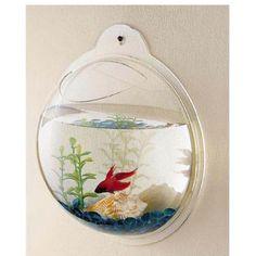 Wall-mount fish tank! So cool!