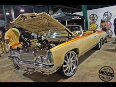 """miami donks 2015 