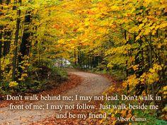 Don't walk...