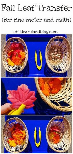 Fall Leaf Transfer ... fun for fine motor and math.
