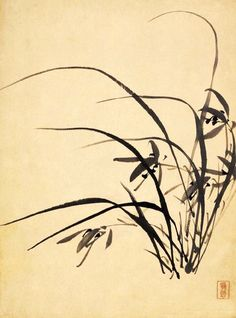 Chinese Painting, Chinese Art, Chinese Brush, Flower Landscape, Chinese Symbols, Wild Orchid, Best Friend Pictures, Haiku, Drops Design