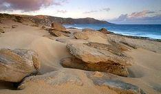 Mo'omomi Beach - Hawaii's Most Intact Beach