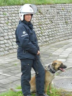'Greating from Belgium Snap' Military Dogs, Beauty And The Beast, Belgium, Rain Jacket, Windbreaker, Jackets, Down Jackets, Military Working Dogs, Jacket