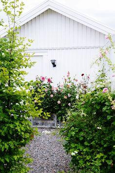 dahliasensommar Farmhouse Garden, Garden Cottage, Garden Pots, Balcony Plants, Victory Garden, Fru Fru, Interior Garden, Dream Garden, Garden Inspiration