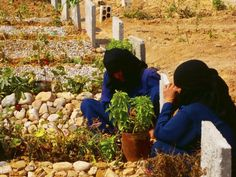 Women react at the graves of their sons, whom activists say were killed by forces loyal to Syria's President Assad, in a cemetery in Homs