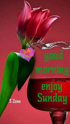 Lord Balaji, Days Of Week, Happy Sunday, Good Morning, David, Christmas Ornaments, Holiday Decor, Sexy, Girls