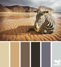 Zebra in the desert tones - design seeds