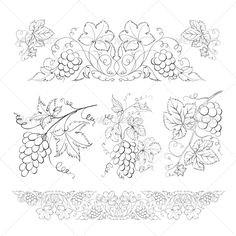 Hand Drawn Grape Set - Flowers & Plants Nature