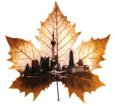 Love this as a tattoo, but the city would be Montreal.