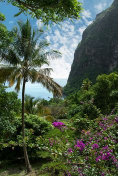 Beautiful Saint. Lucia -- http://www.travelandtransitions.com/destinations/destination-advice/latin-america-the-caribbean/